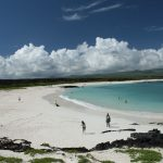 Galapagos named as the leading beach destination in the world