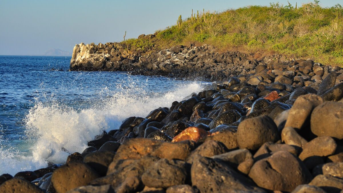 Rules to protect fauna and flora of Galapagos Islands