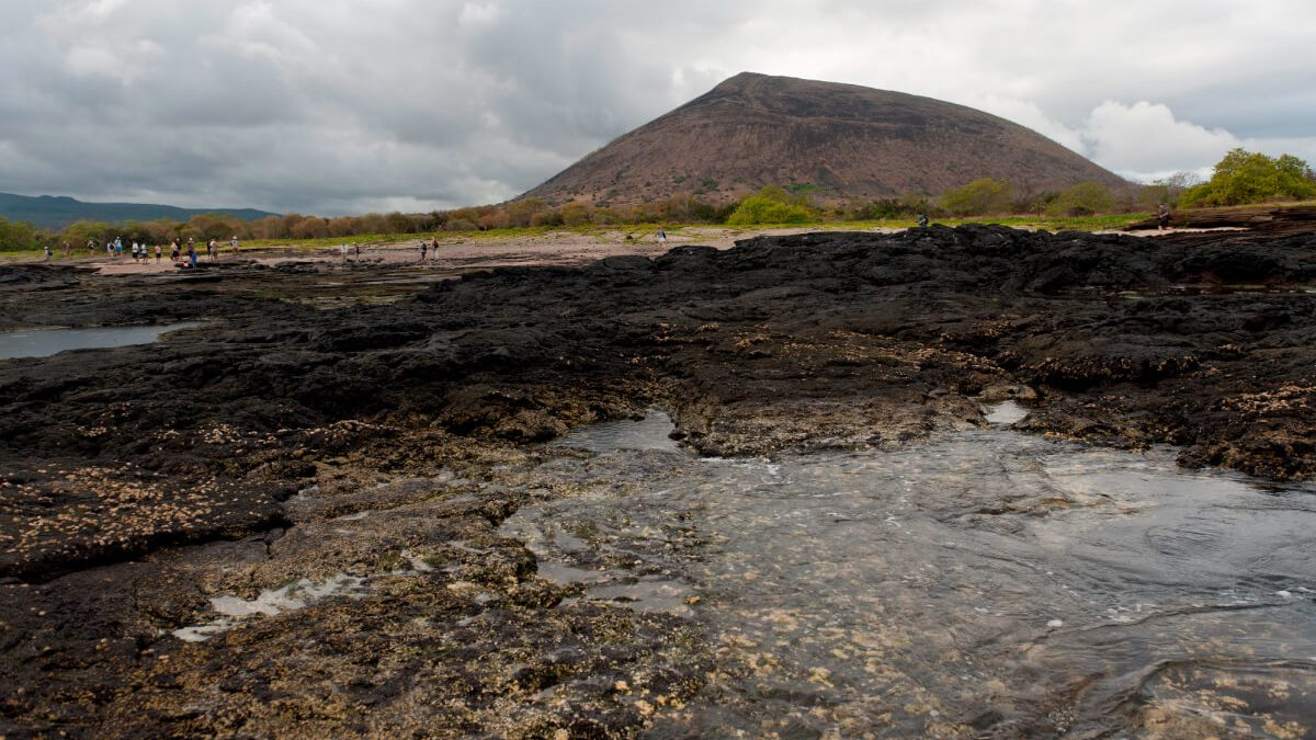 The main volcanoes of the Galapagos Islands